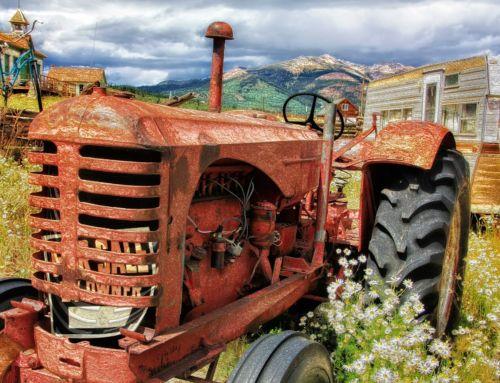 AGRICOLTURA: DUE MILIONI DI EURO PER SERVIZI DI CONSULENZA ALLE AZIENDE AGRICOLE